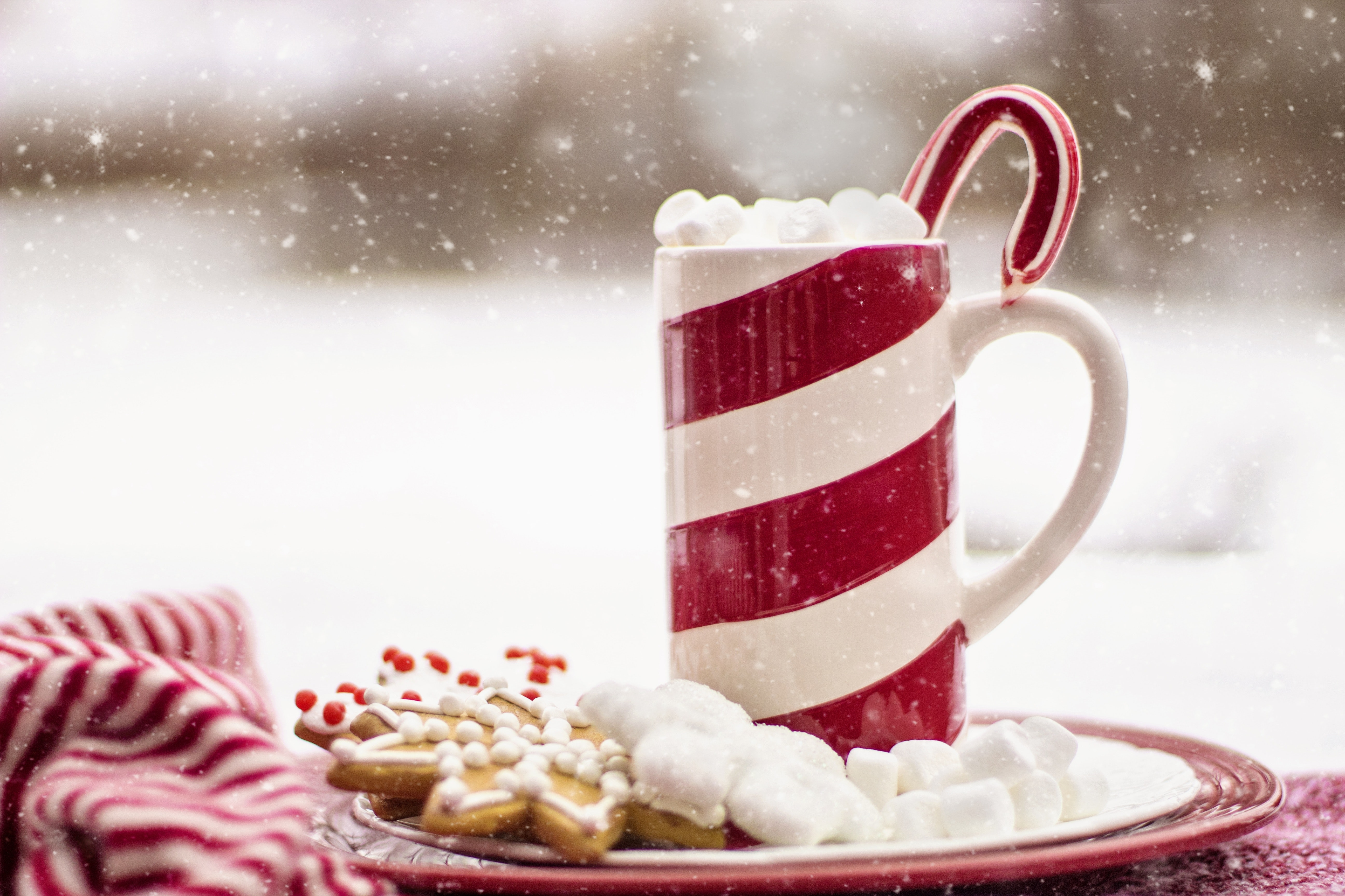beverage-blur-candy-candy-cane-260485