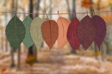 leaves-hang-on-rope-1389460